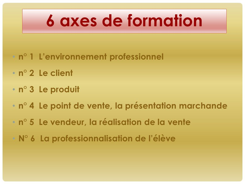 6 axes de formation n° 1 L'environnement professionnel n° 2 Le client