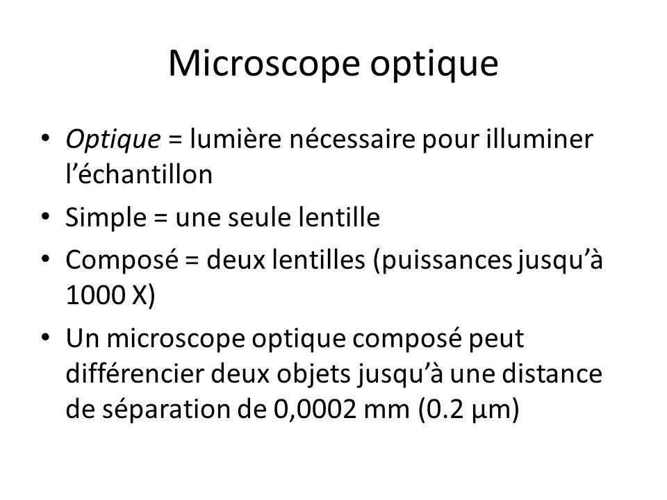 Microscope optique Optique = lumière nécessaire pour illuminer l'échantillon. Simple = une seule lentille.