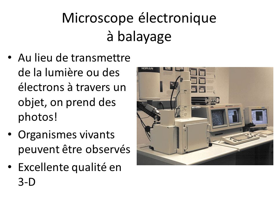 Microscope électronique à balayage