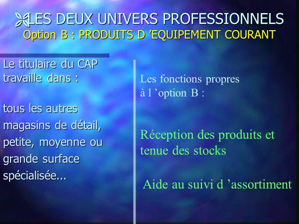 LES DEUX UNIVERS PROFESSIONNELS Option B : PRODUITS D 'EQUIPEMENT COURANT