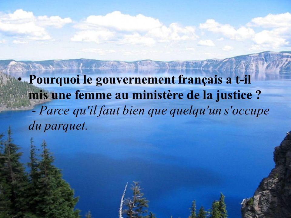 Pourquoi le gouvernement français a t-il mis une femme au ministère de la justice .