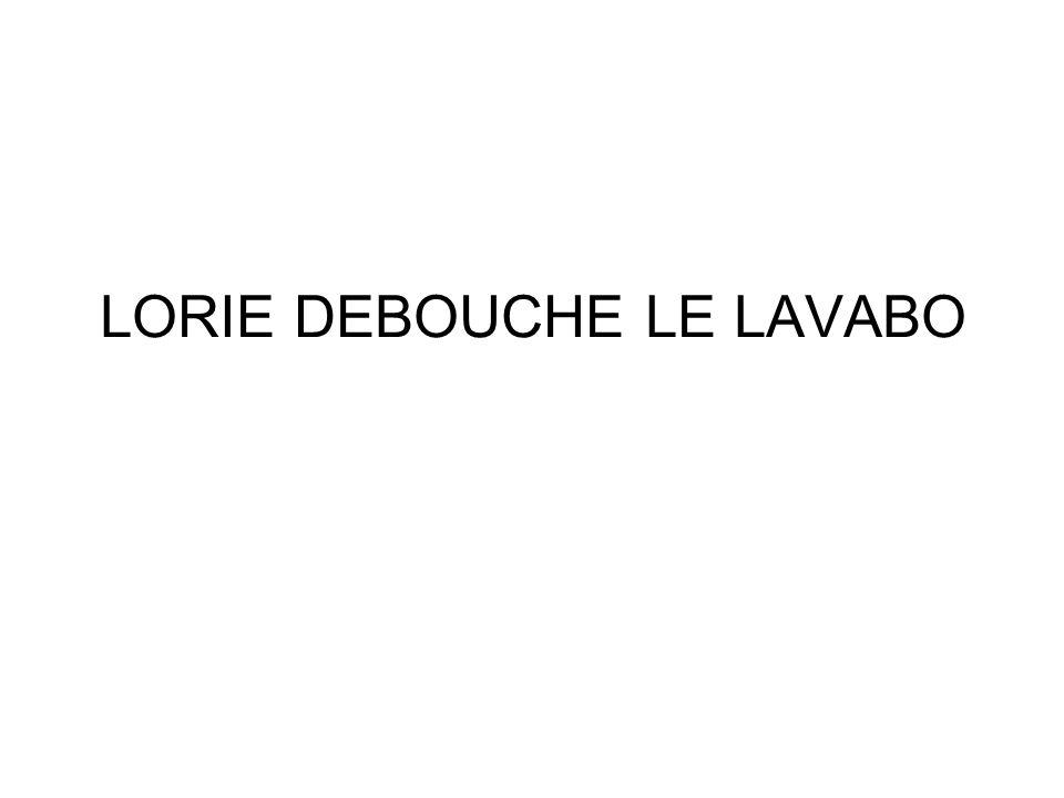 LORIE DEBOUCHE LE LAVABO
