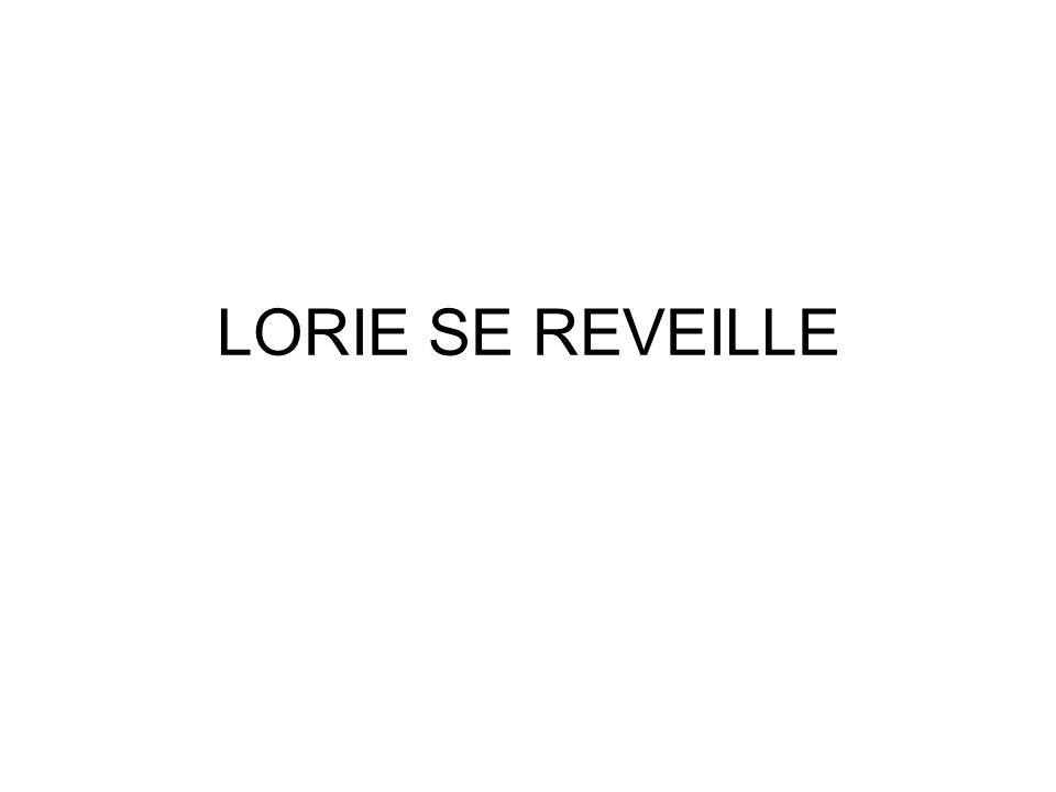 LORIE SE REVEILLE