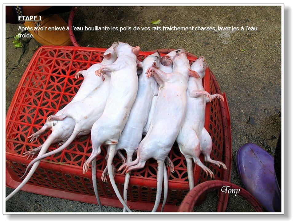 ETAPE 1 Après avoir enlevé à l'eau bouillante les poils de vos rats fraîchement chassés, lavez les à l'eau froide.