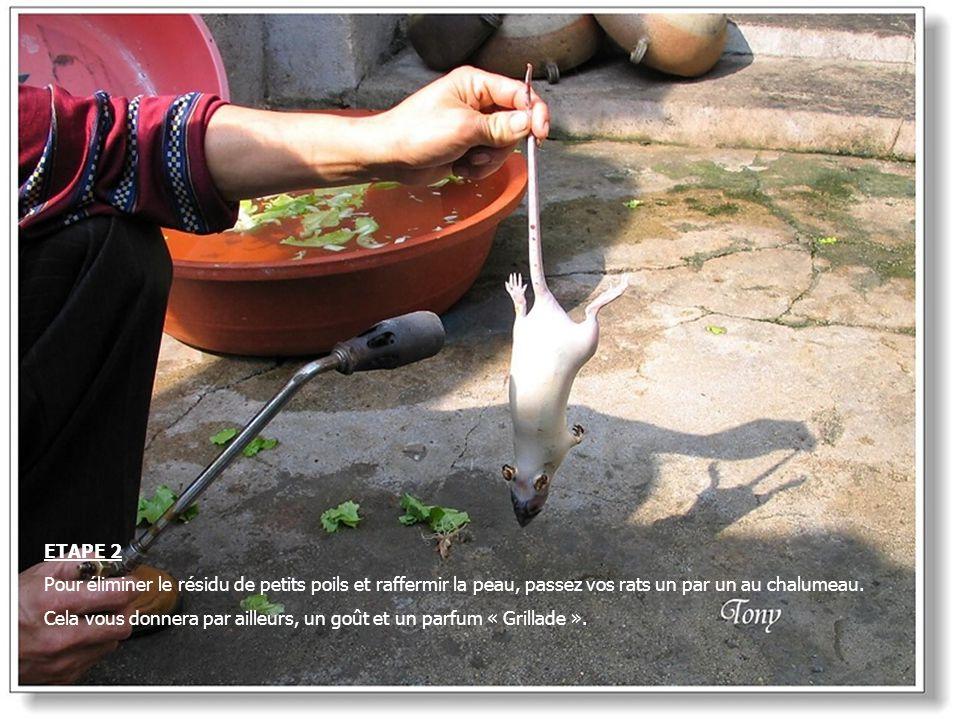 ETAPE 2 Pour éliminer le résidu de petits poils et raffermir la peau, passez vos rats un par un au chalumeau.