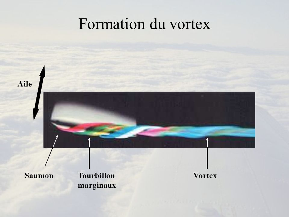 Formation du vortex Aile Saumon Tourbillon marginaux Vortex