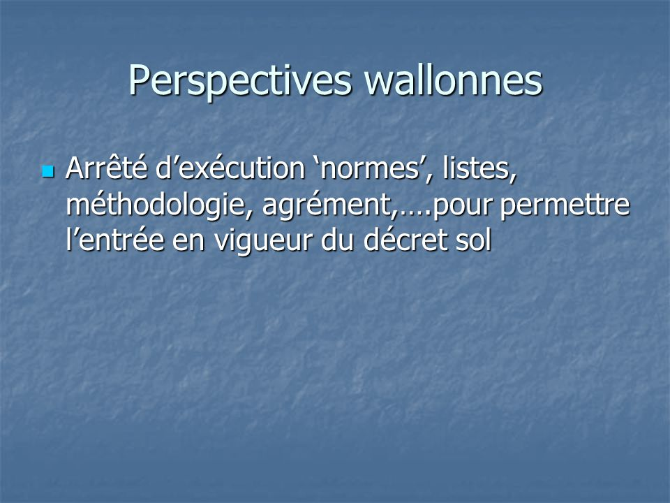 Perspectives wallonnes
