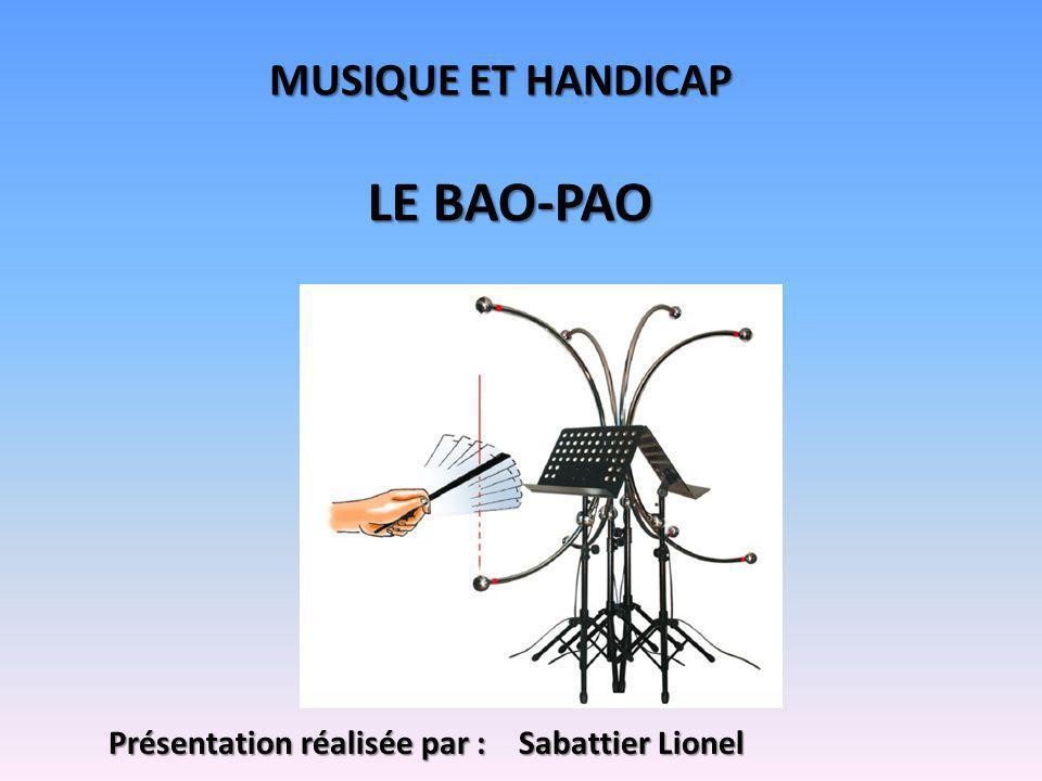 LE BAO-PAO MUSIQUE ET HANDICAP Présentation réalisée par :