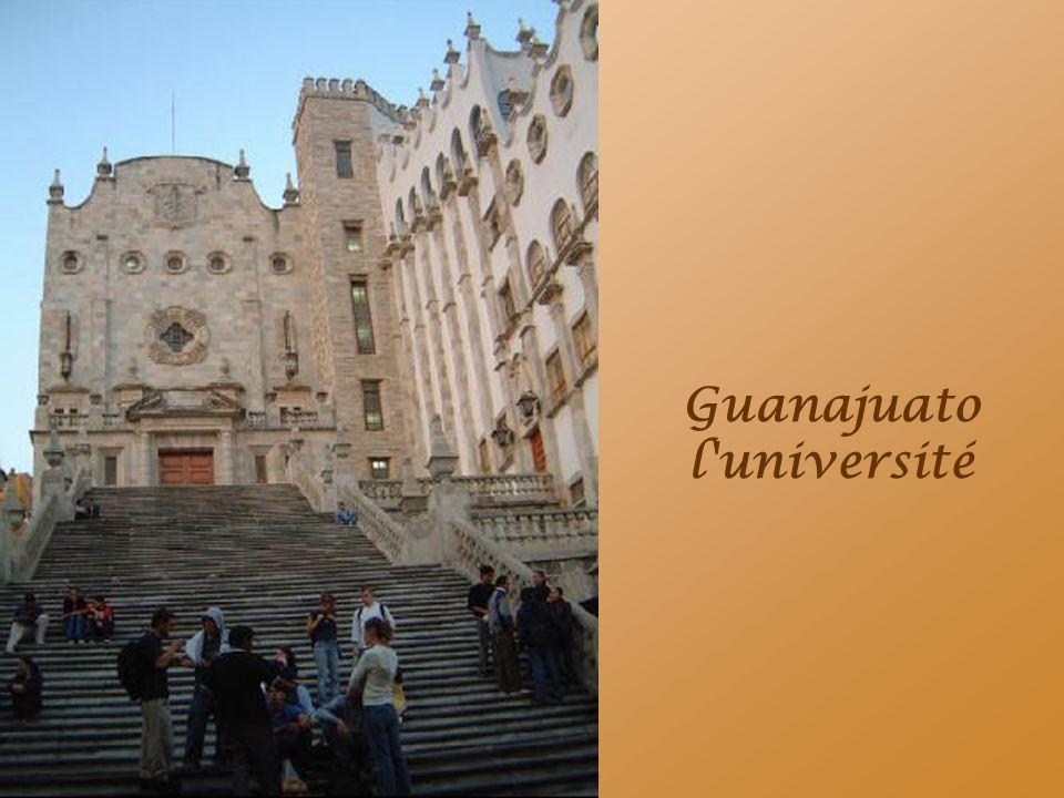 Guanajuato l université