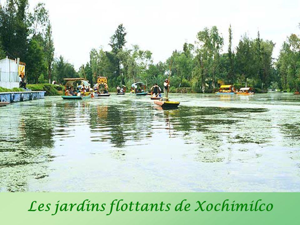 Les jardins flottants de Xochimilco