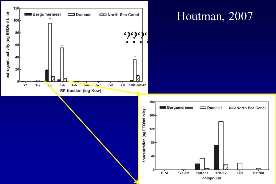 Houtman, 2007