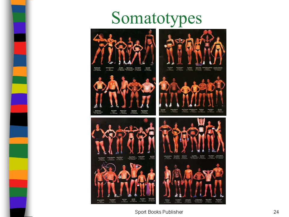 Somatotypes Sport Books Publisher