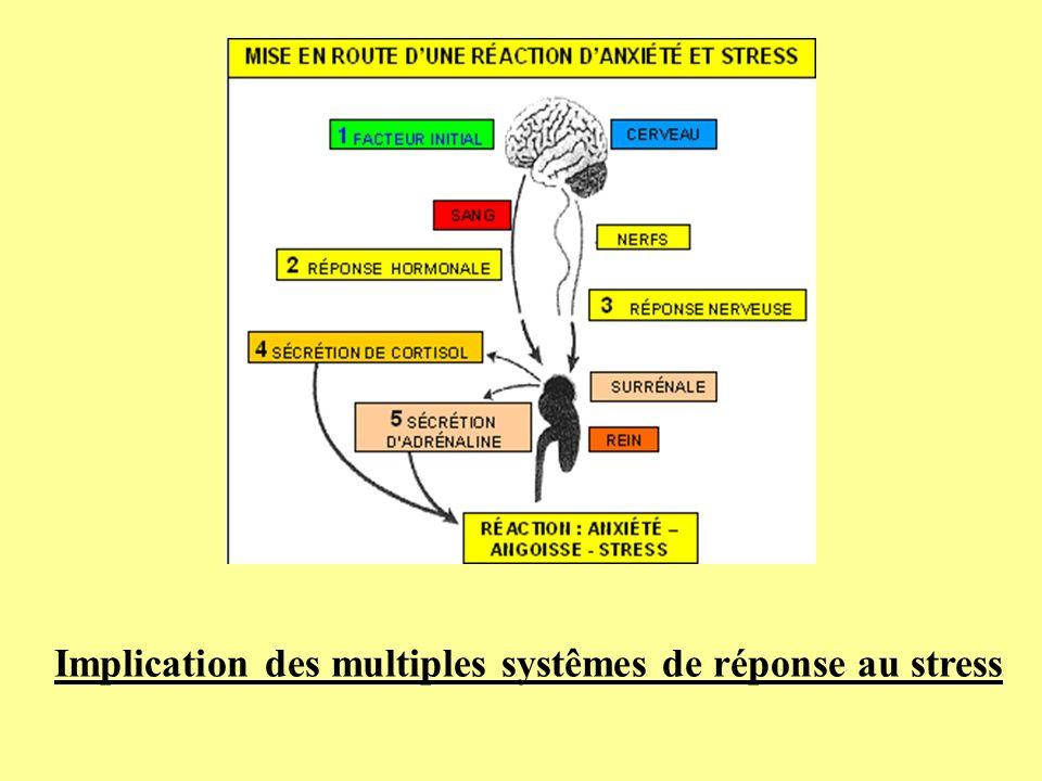 Implication des multiples systêmes de réponse au stress