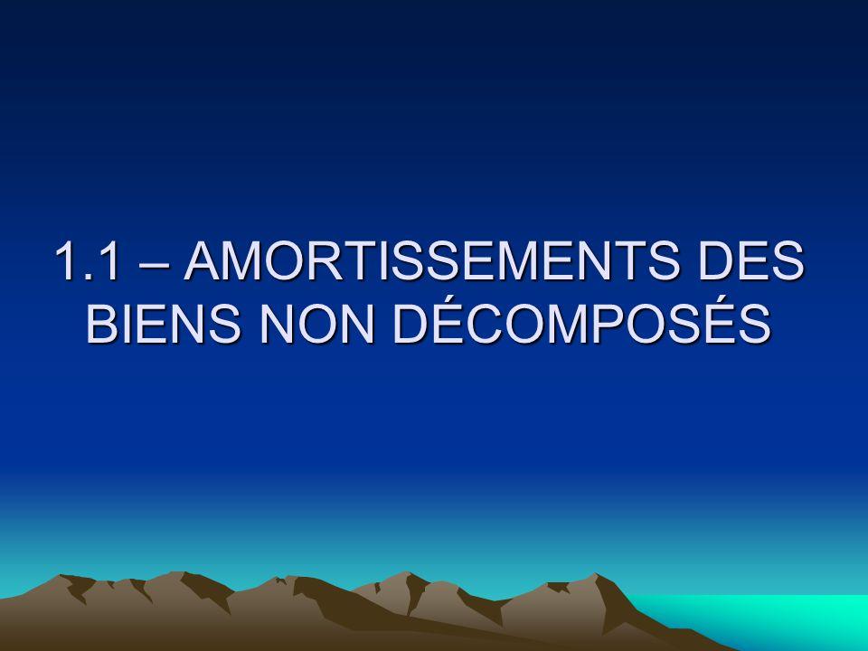 1.1 – AMORTISSEMENTS DES BIENS NON DÉCOMPOSÉS