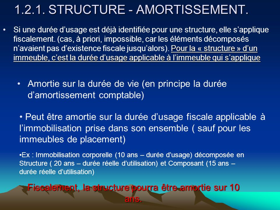 1.2.1. STRUCTURE - AMORTISSEMENT.