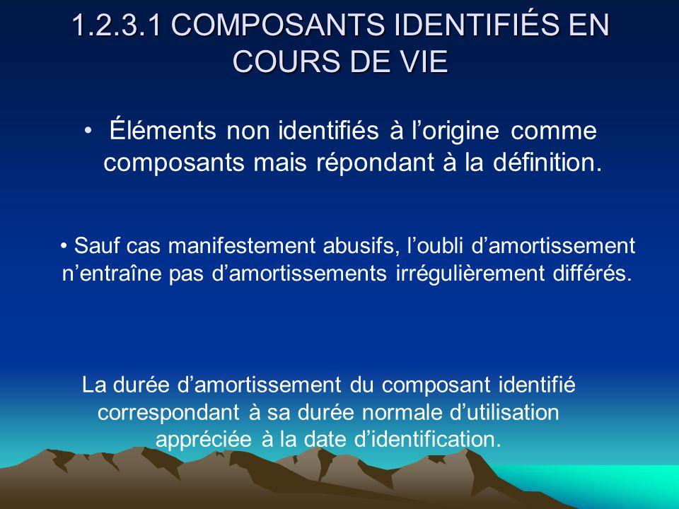 1.2.3.1 COMPOSANTS IDENTIFIÉS EN COURS DE VIE