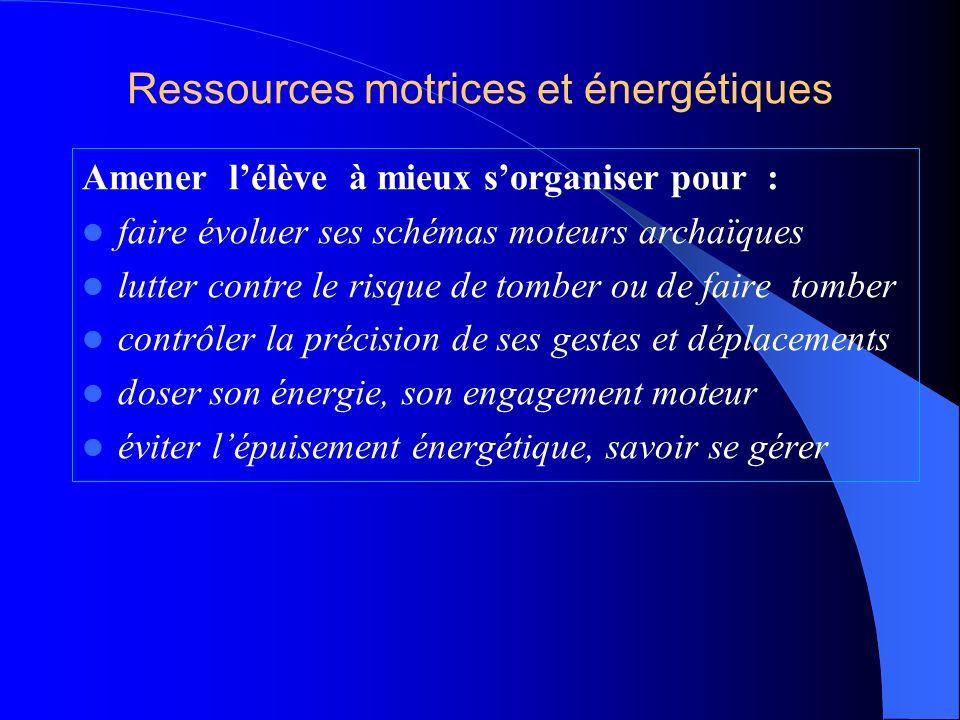 Ressources motrices et énergétiques
