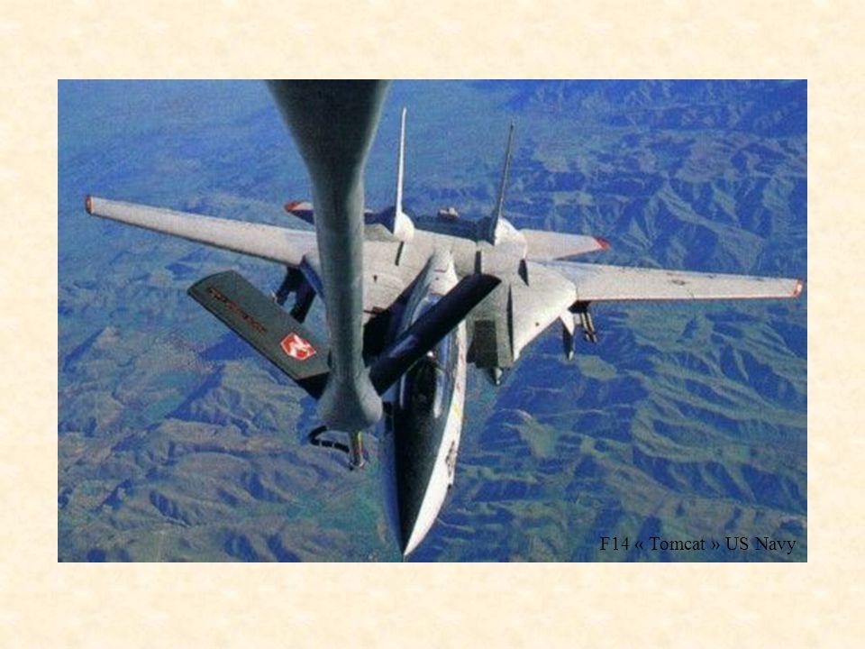 F14 « Tomcat » US Navy