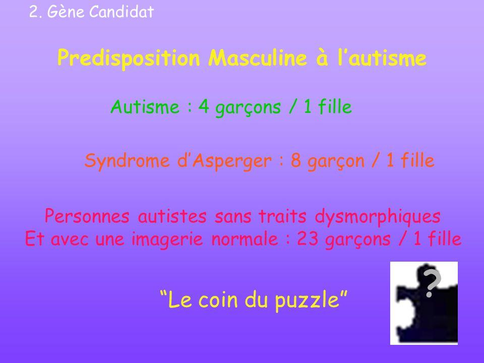 Predisposition Masculine à l'autisme