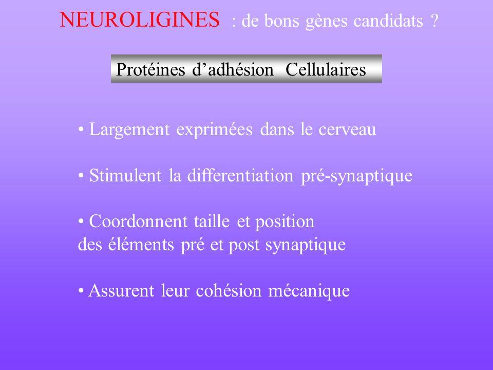 NEUROLIGINES : de bons gènes candidats