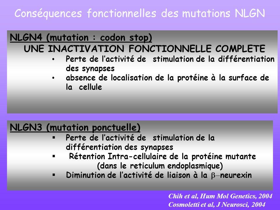 Conséquences fonctionnelles des mutations NLGN