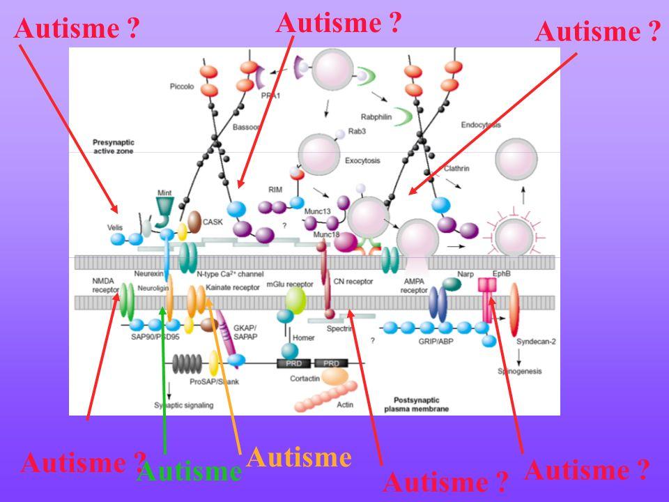 Autisme Autisme Autisme