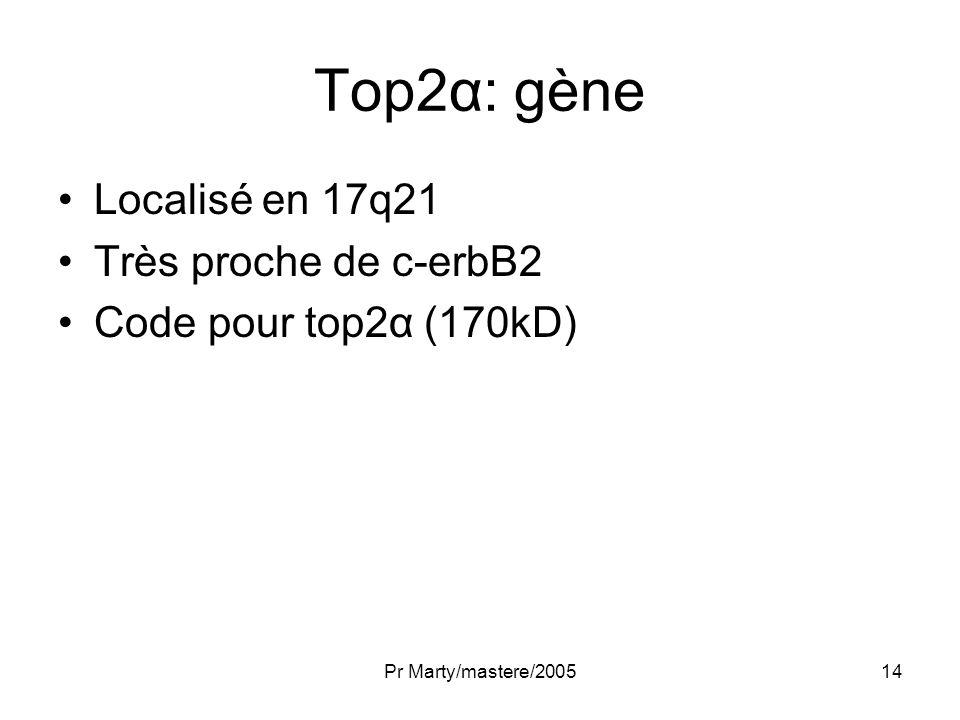 Top2α: gène Localisé en 17q21 Très proche de c-erbB2