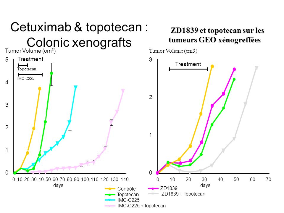 Cetuximab & topotecan : Colonic xenografts