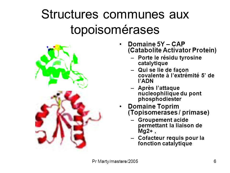 Structures communes aux topoisomérases