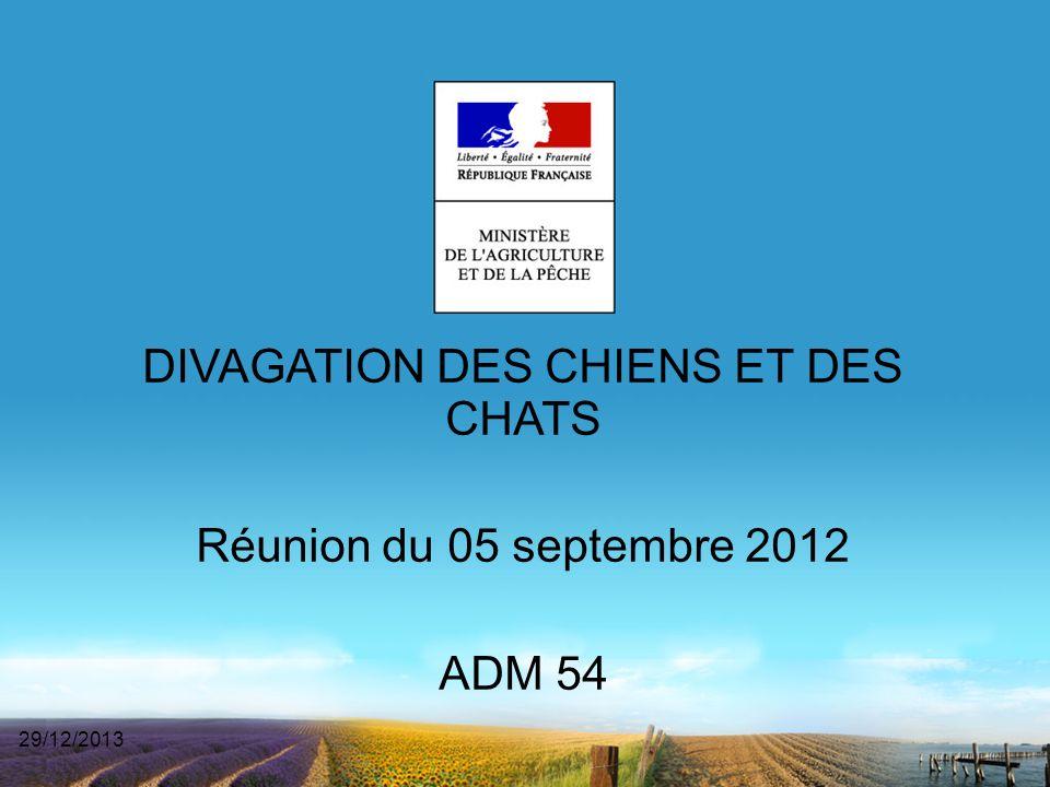 DIVAGATION DES CHIENS ET DES CHATS