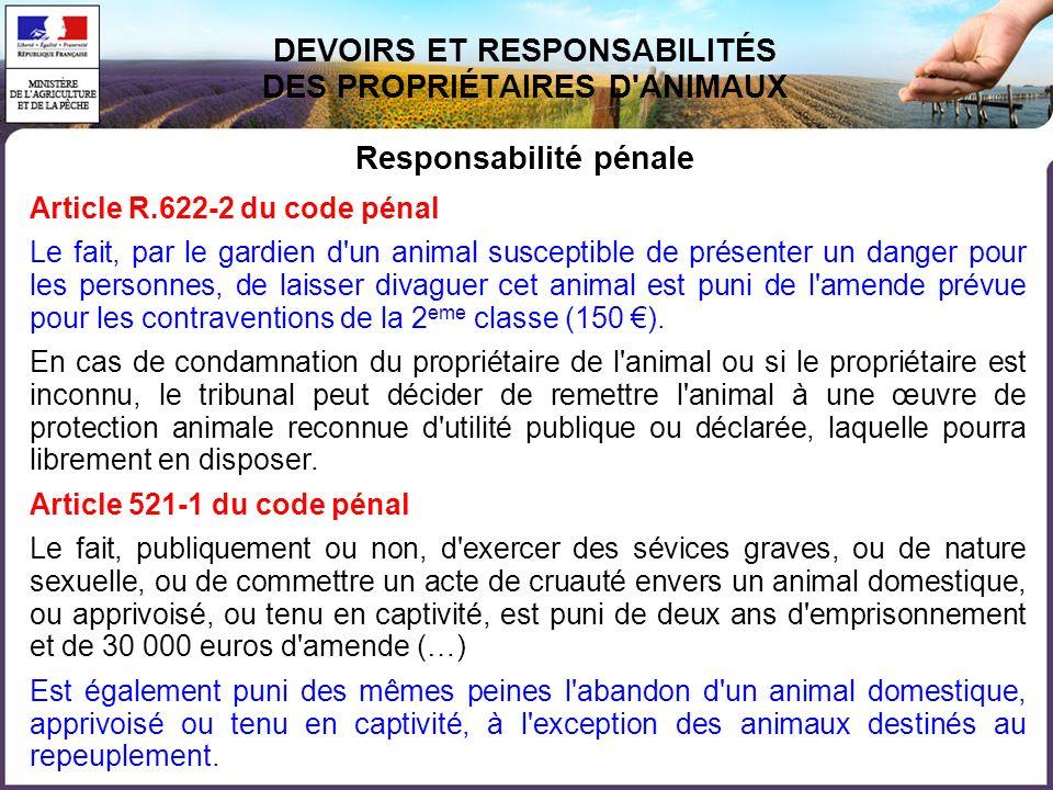 DEVOIRS ET RESPONSABILITÉS DES PROPRIÉTAIRES D ANIMAUX Responsabilité pénale