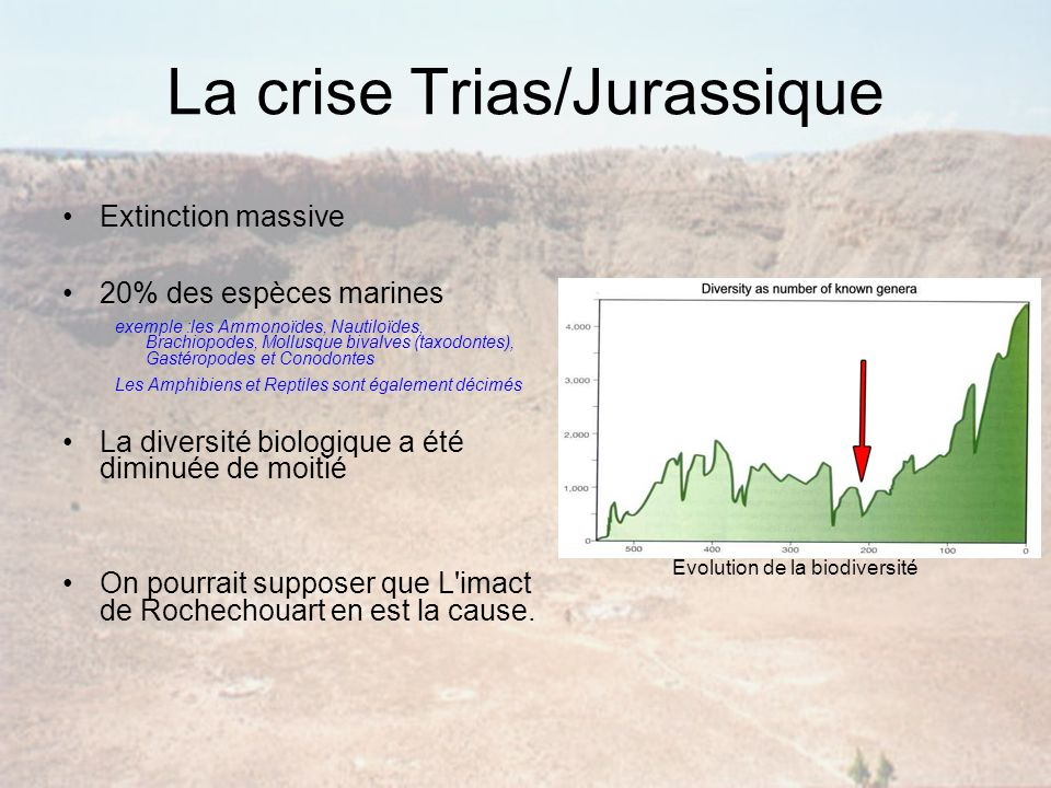 La crise Trias/Jurassique