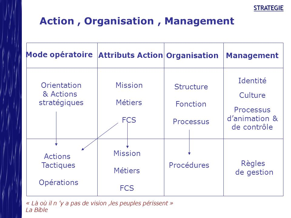 Action , Organisation , Management