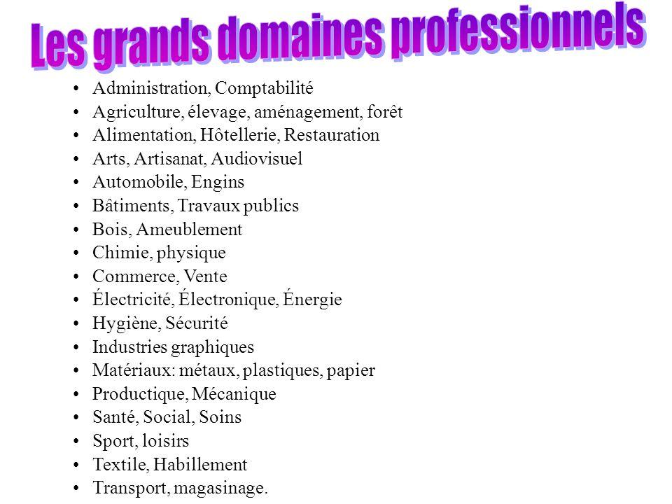 Les grands domaines professionnels