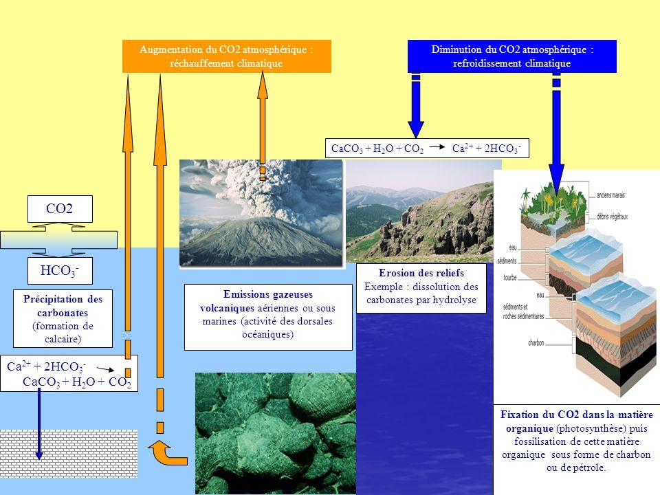 CO2 HCO3- Ca2+ + 2HCO3- CaCO3 + H2O + CO2