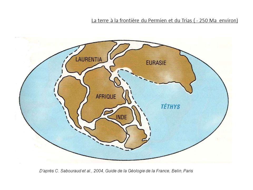 La terre à la frontière du Permien et du Trias ( - 250 Ma environ)