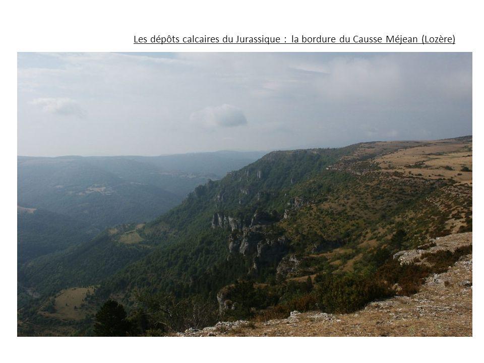 Les dépôts calcaires du Jurassique : la bordure du Causse Méjean (Lozère)