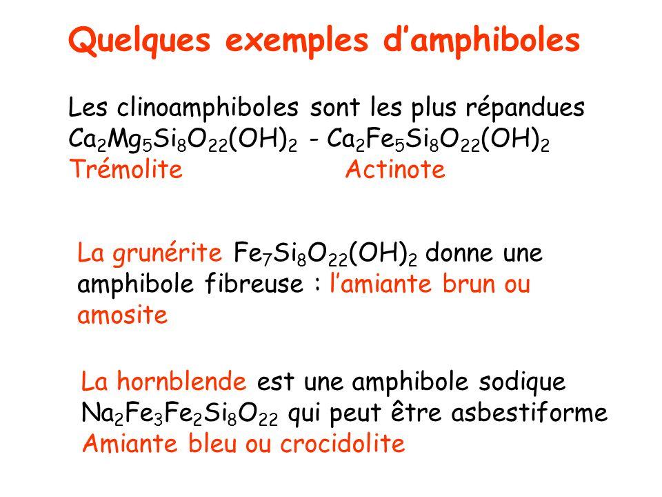 Quelques exemples d'amphiboles