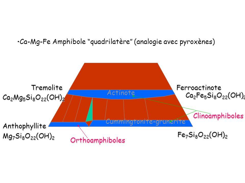 Ca-Mg-Fe Amphibole quadrilatère (analogie avec pyroxènes)