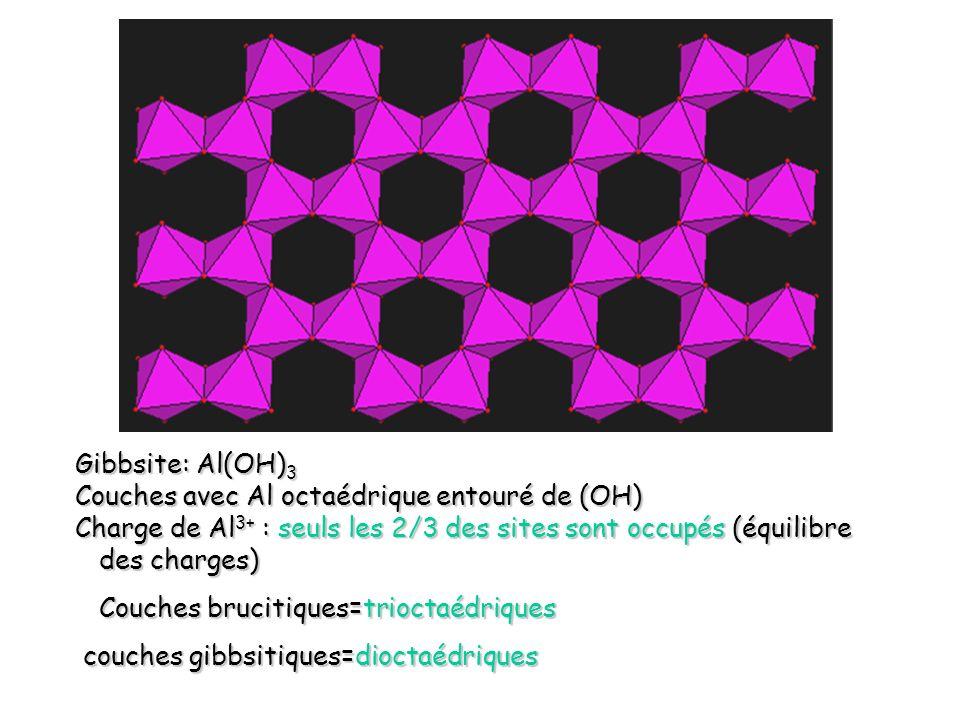 a1Gibbsite: Al(OH)3. Couches avec Al octaédrique entouré de (OH) Charge de Al3+ : seuls les 2/3 des sites sont occupés (équilibre des charges)