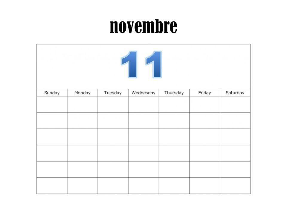 novembre 11