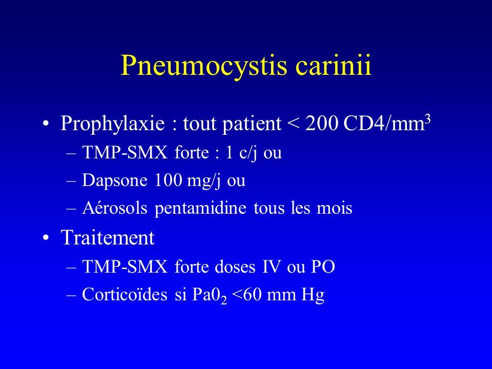 Pneumocystis carinii Prophylaxie : tout patient < 200 CD4/mm3