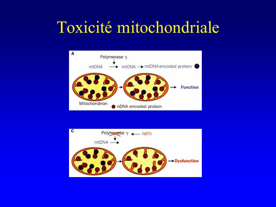 Toxicité mitochondriale