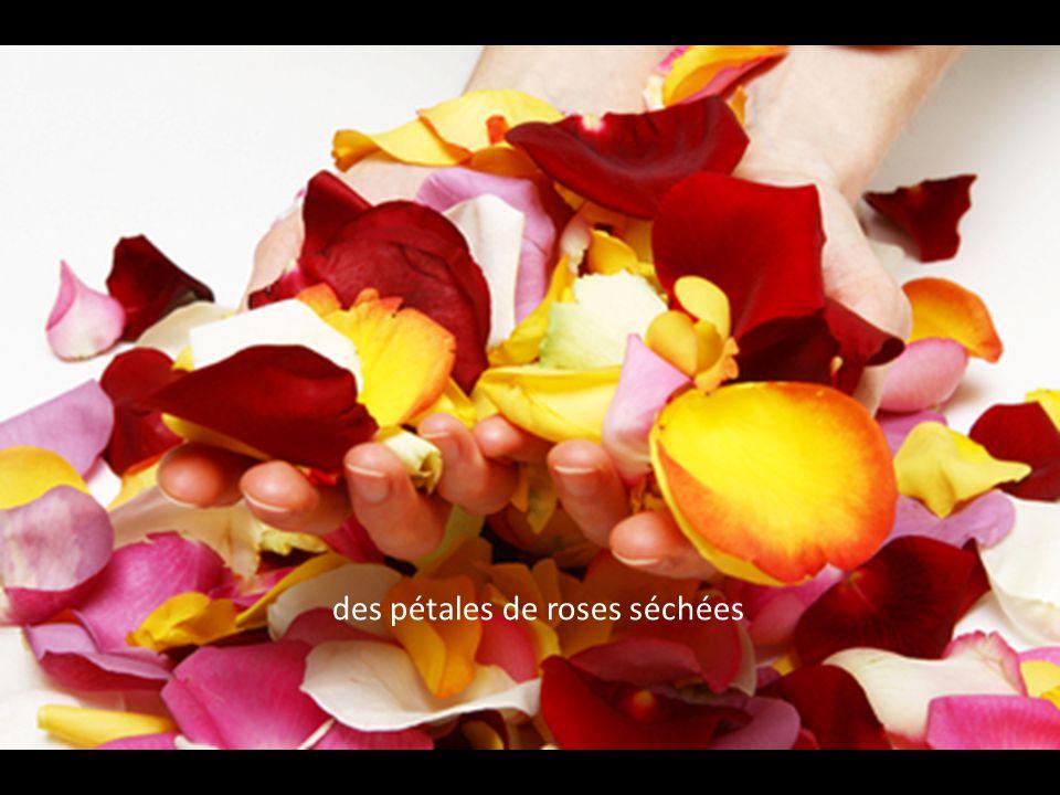 des pétales de roses séchées