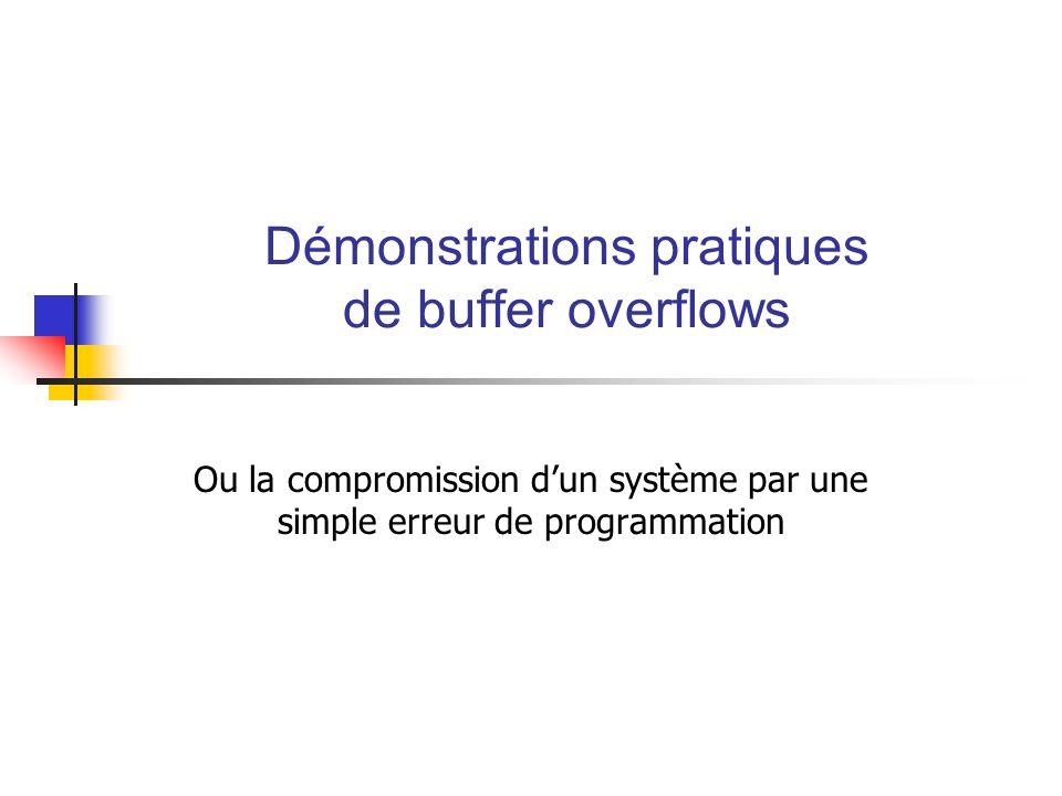 Démonstrations pratiques de buffer overflows