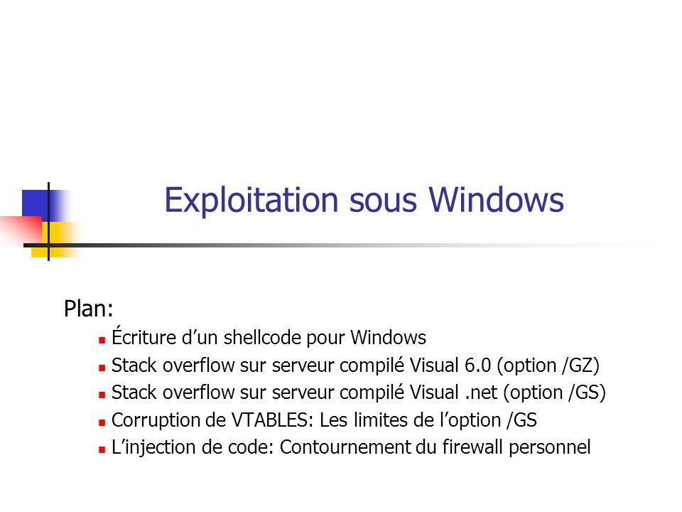 Exploitation sous Windows