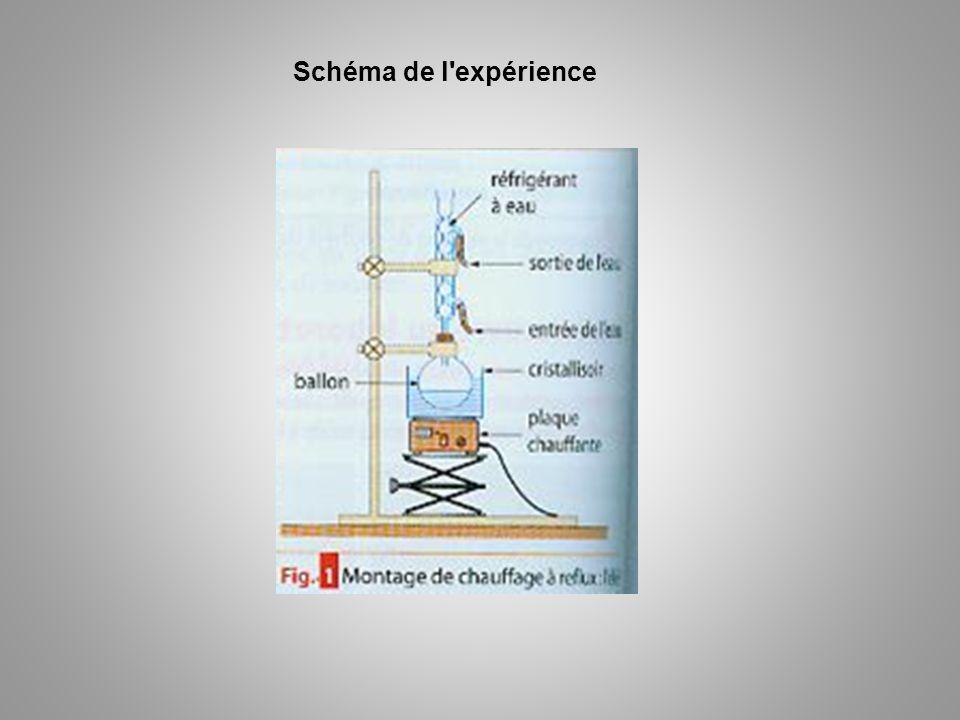 Schéma de l expérience
