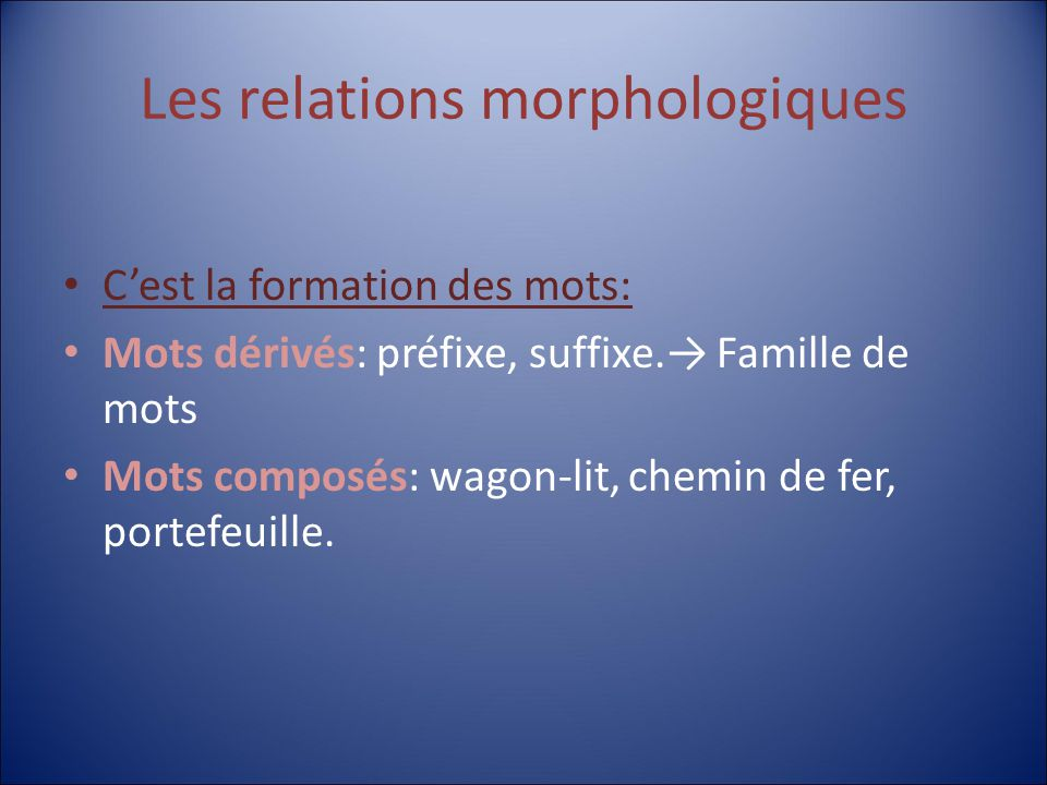 Les relations morphologiques