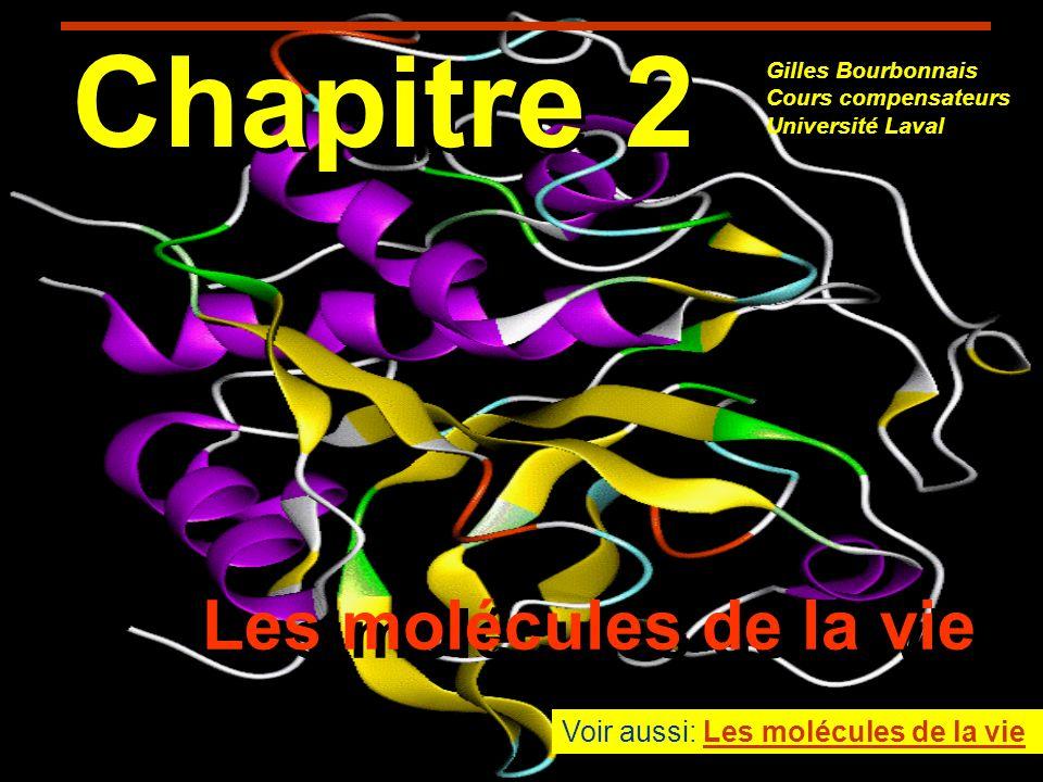 Chapitre 2 Les molécules de la vie Voir aussi: Les molécules de la vie