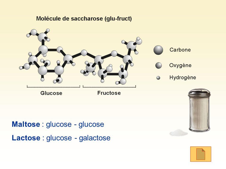 Maltose : glucose - glucose
